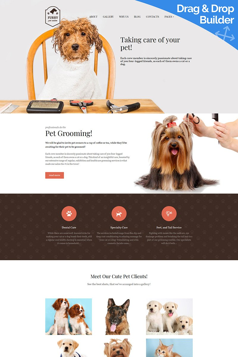 """Furry - Pet Grooming"" Responsive Moto CMS 3 Template №91272"