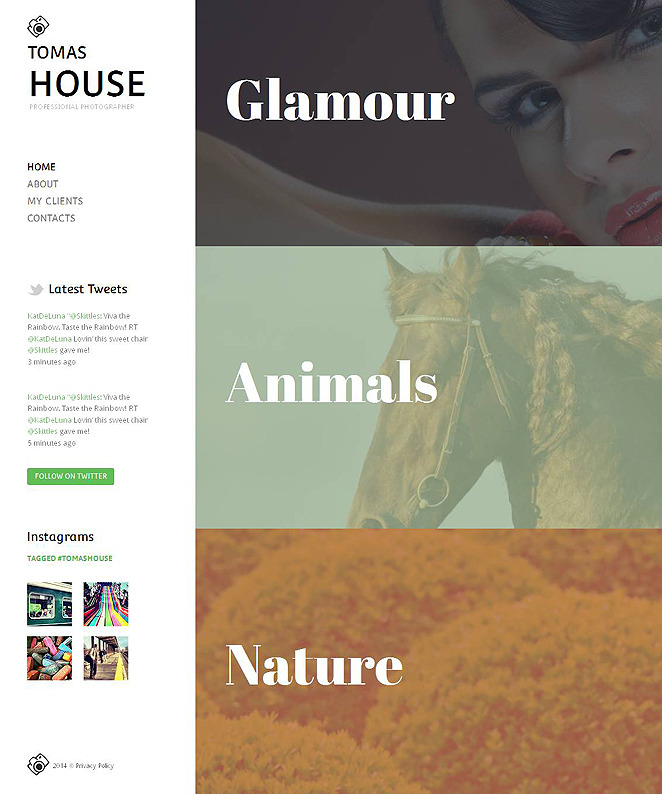 Website Template with 3 Photo Galleries for Creative