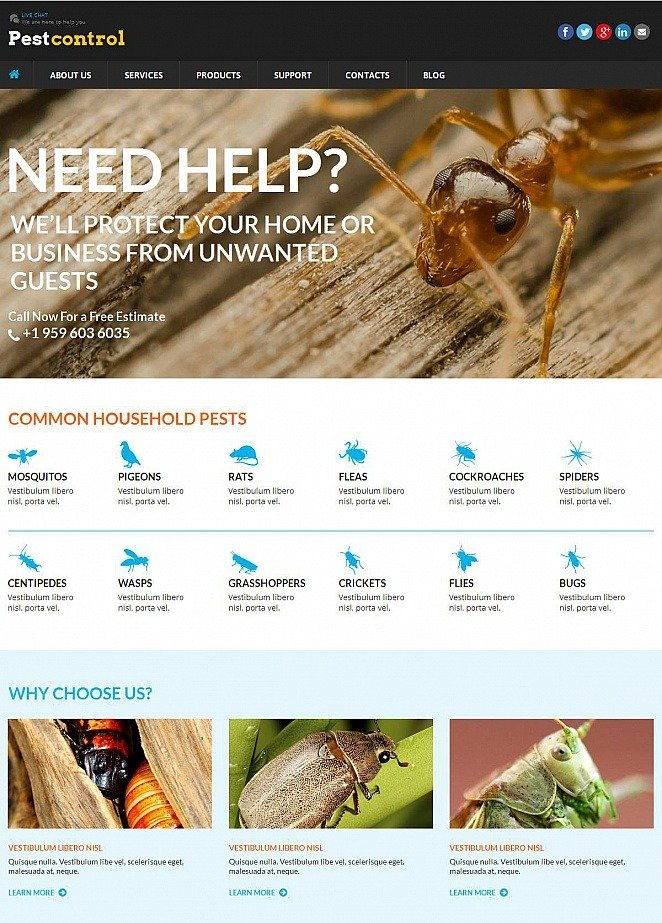 home pest control website template image