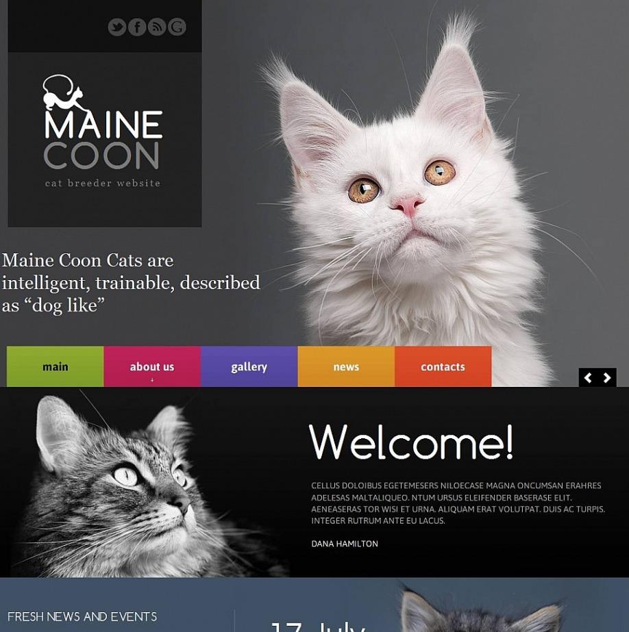 dog coat template.html