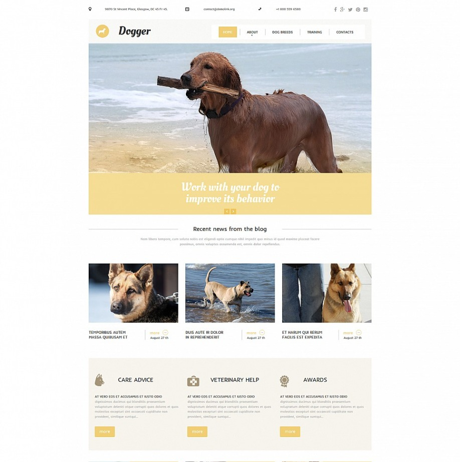 Dog training website template for dog obedience school motocms responsive site for animal trainers maxwellsz