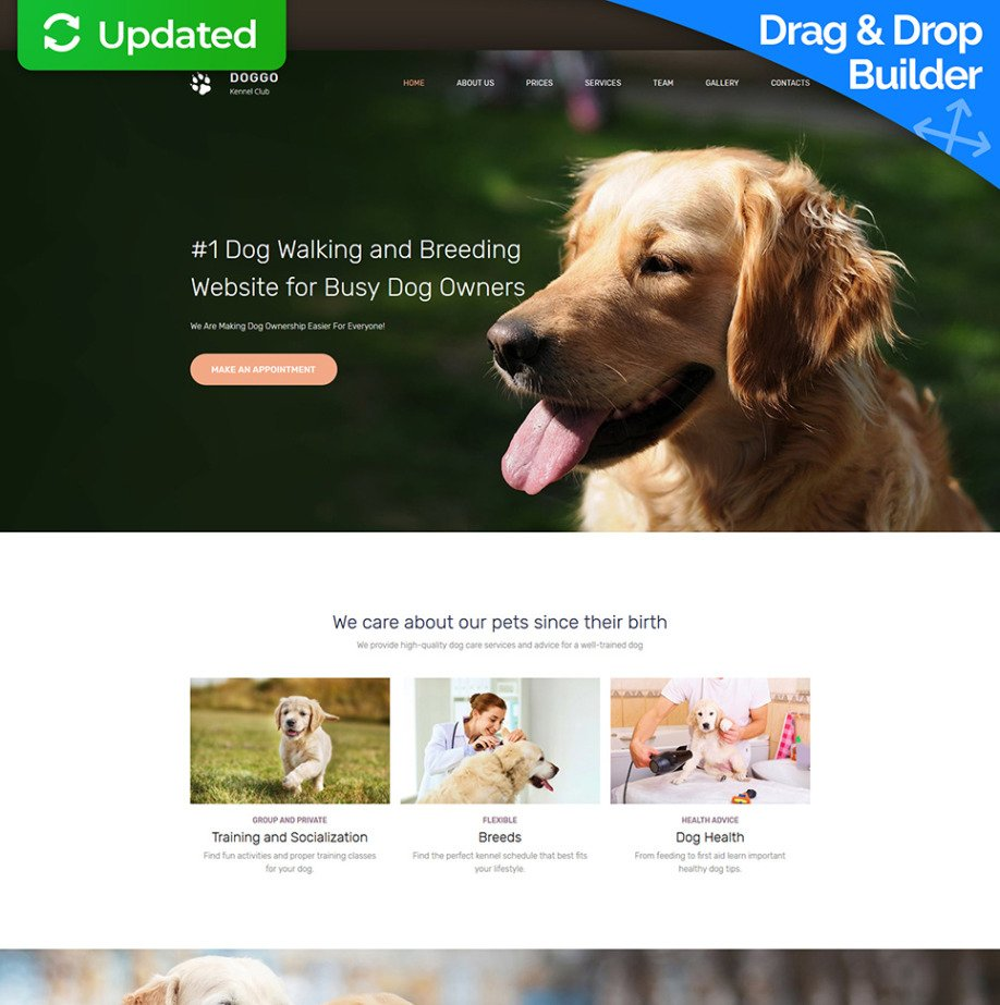 Dog Walking Website Template For Kennel Club Image