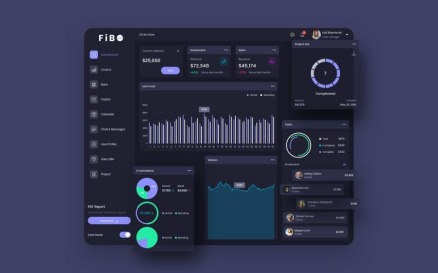 FiBO Finance Dashboard Ui Dark Sketch Template