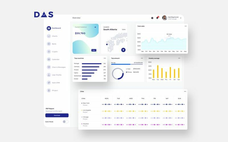 DAS Finance Dashboard Ui Light Sketch Template