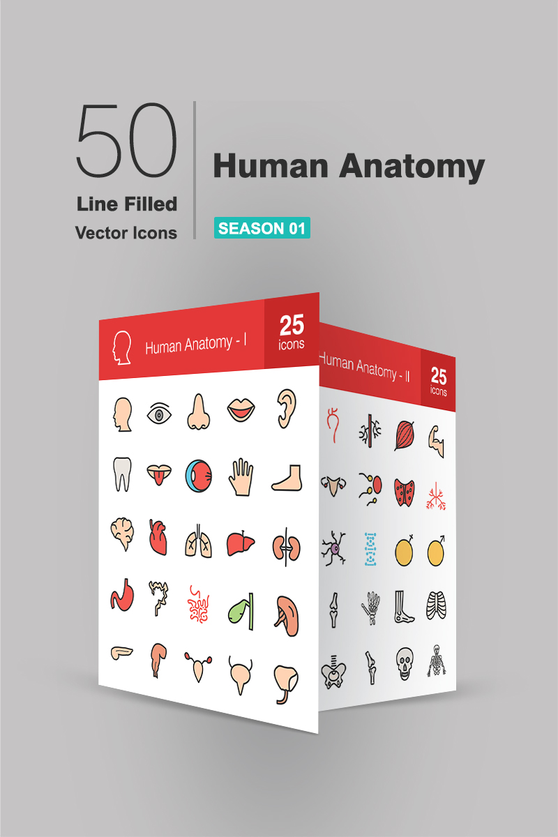 50 Human Anatomy Filled Line Iconset Template