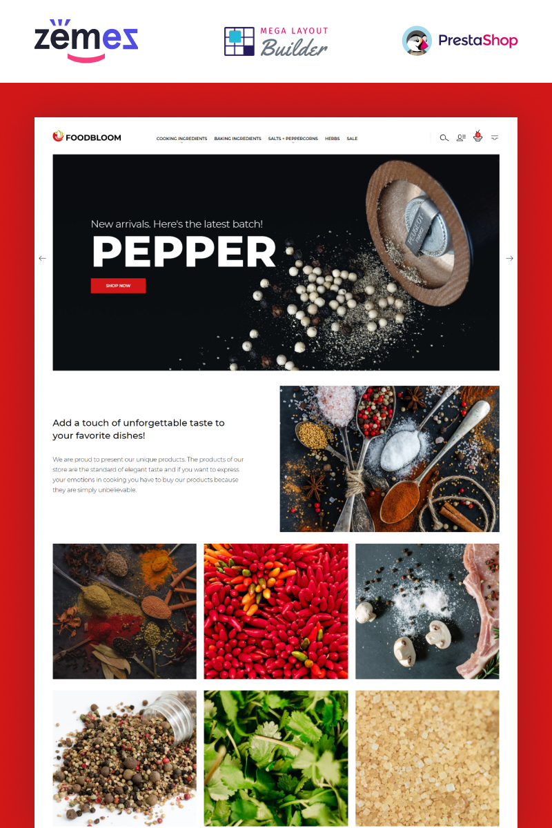 FoodBloom - Spices Store eCommerce Template Tema PrestaShop №94386 - captura de tela
