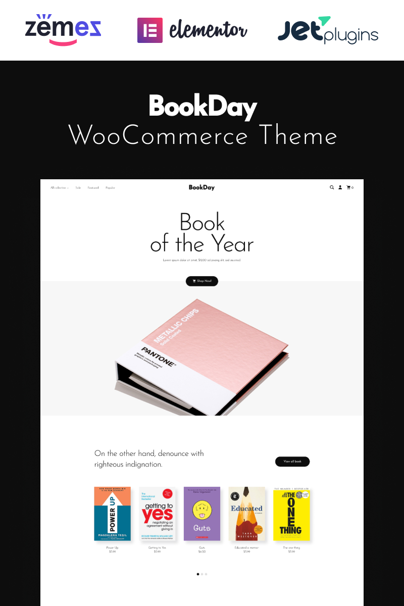 """BookDay - Clean and Rapid Online Bookstore Website Design"" Responsive WooCommerce Thema №94894"