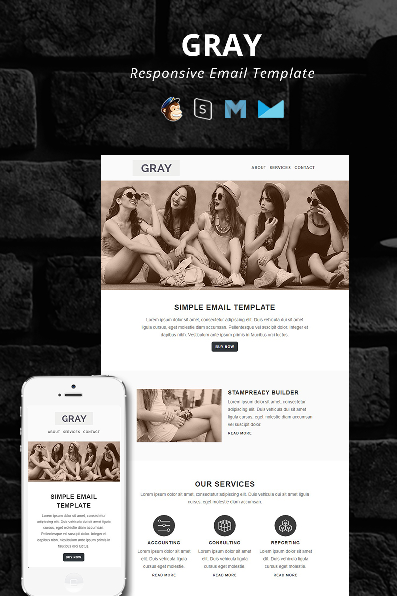 """""""GRAY - Responsive Email"""" 响应式邮件模板 #95402"""