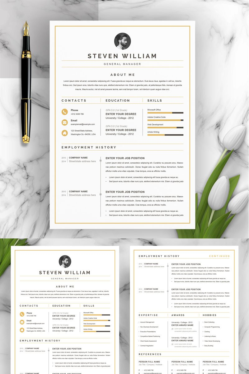 Steven Resume Template - screenshot