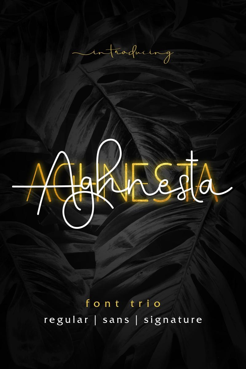 """""""Aghnesta"""" - Шрифт №95838 - скріншот"""