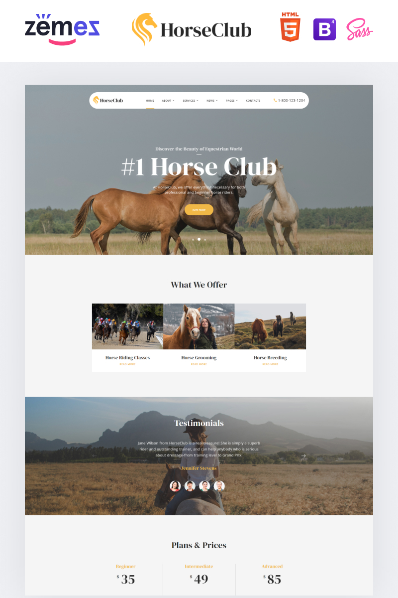 """HorseClub - Elegant Animals Multipage HTML"" Responsive Website template №95960 - screenshot"