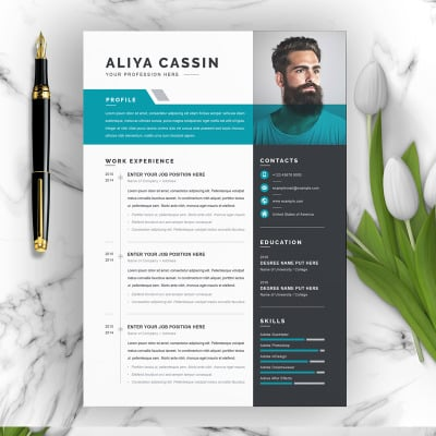 Aliya Resume Template Resume Template #97961