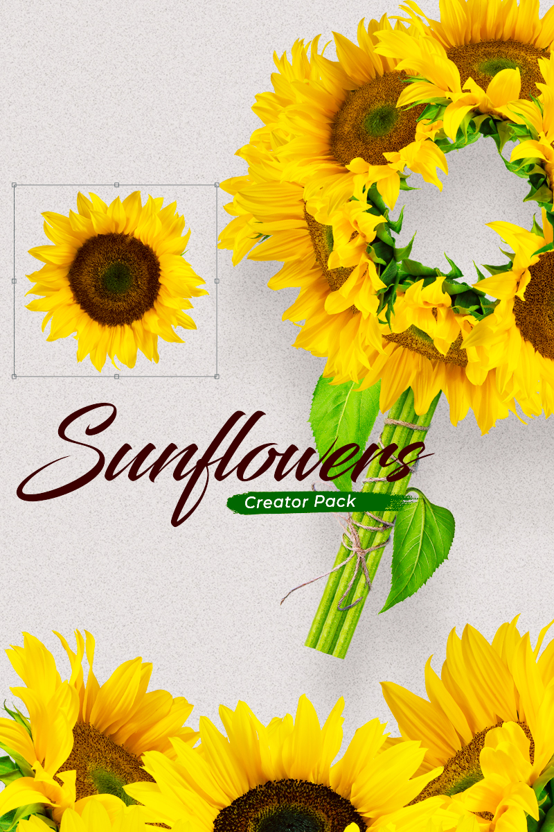 Sunflowers Creator Pack Product Mockup