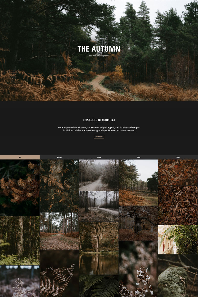 """The Autumn - Portfolio | Responsive"" 响应式Drupal模板 #98473"