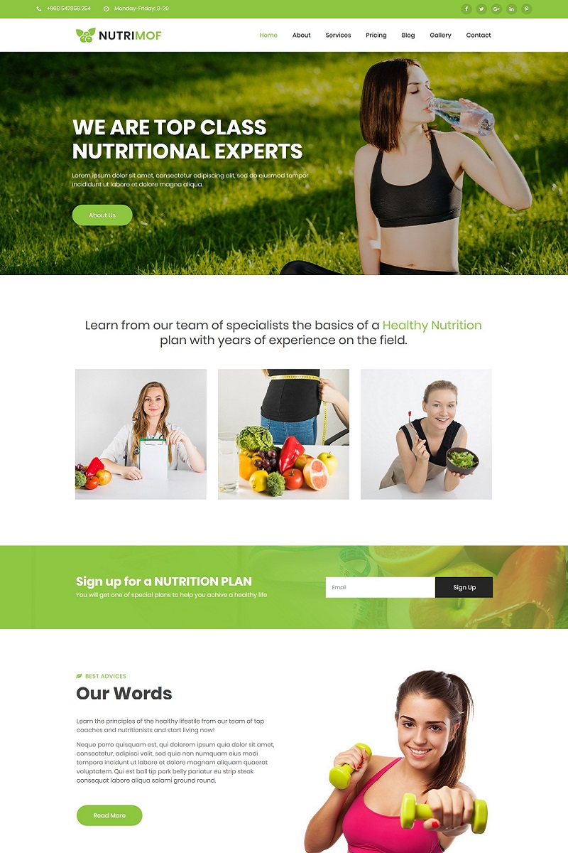 "WordPress Theme namens ""Nutrimof - Nutritional & Health"" #99813"