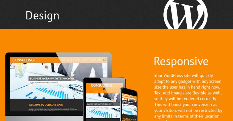 Consulting Co WordPress Theme - Features Image 1