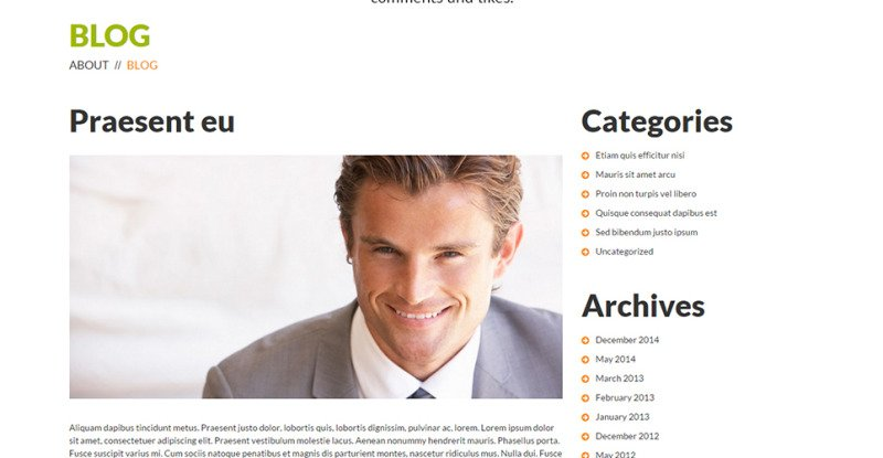 Consulting Co WordPress Theme - Features Image 22
