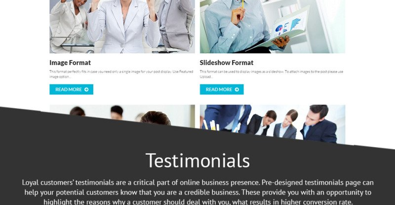 Consulting Co WordPress Theme - Features Image 26