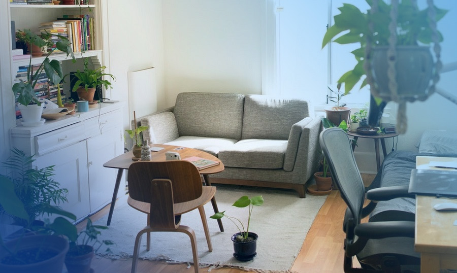2019 Best Rental Property Booking WordPress Themes