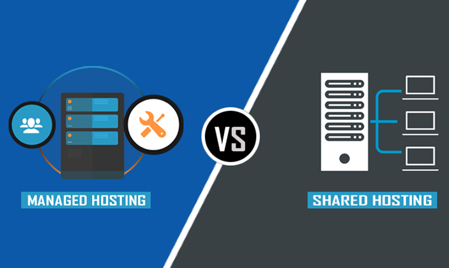 Managed vs Shared Hosting for WordPress: What's An Ideal Choice?